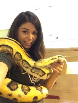 Amy Snake